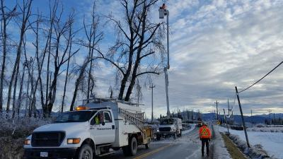 Emergency Arborist Services